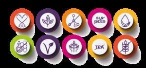ikonki produktowe 151 purles